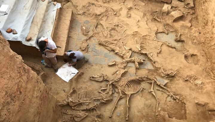 Прощальный пир в загадочном Тартессе: новые открытия и новые загадки для археологов